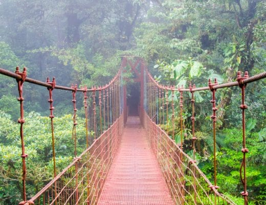 Things to do in Monteverde, with hanging bridge overlooking rainforest